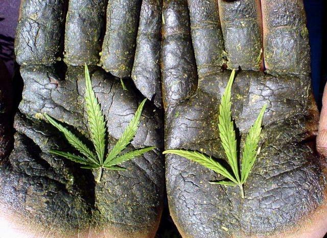 Как сделать ручник из травы