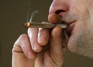 115_cannabis.jpg