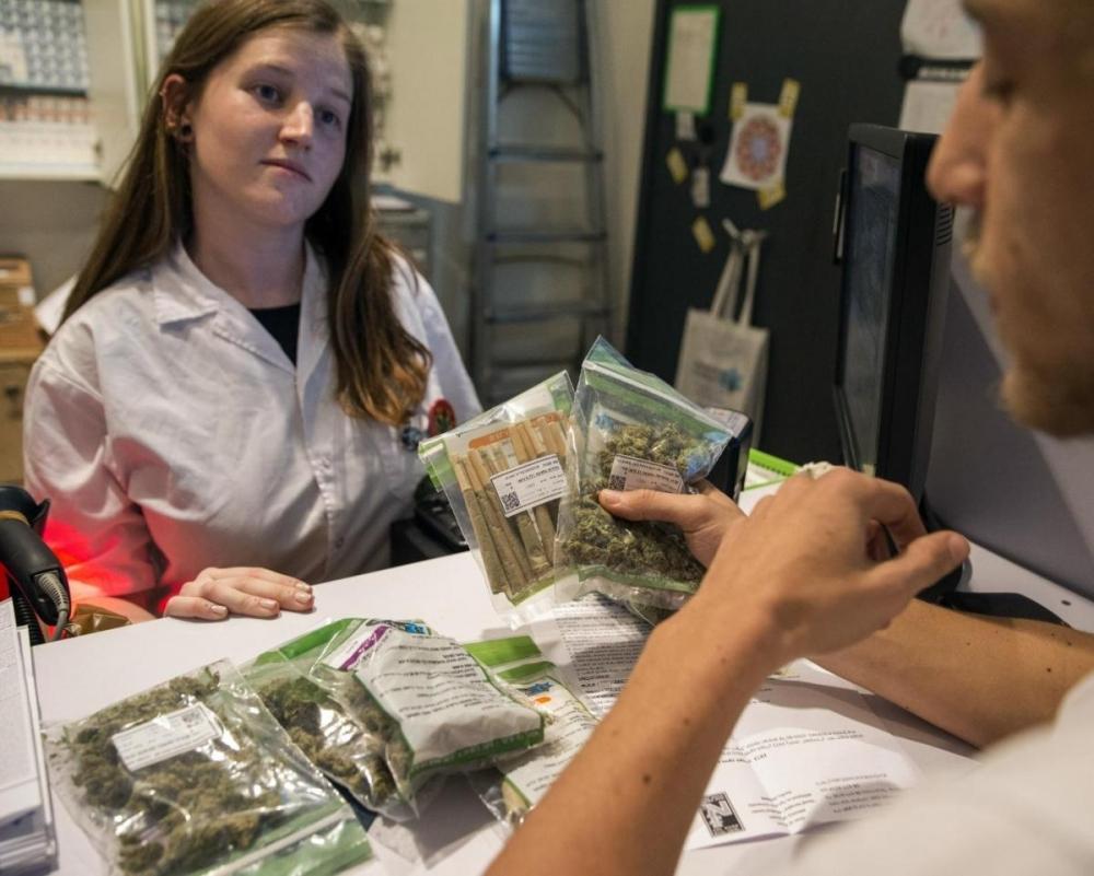 cannabis israel.jpg