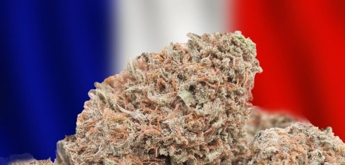 france marijuana.jpg