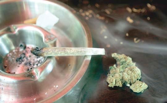 nauseous marijuana.jpg