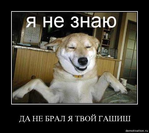 post-35597-0-69214000-1471974561_thumb.jpeg
