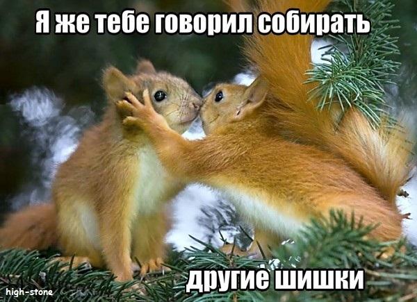 post-25888-0-33826000-1474448404_thumb.jpg