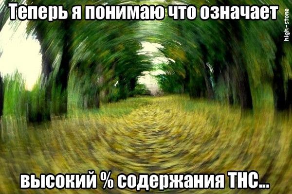 post-25888-0-34132500-1474904813_thumb.jpg