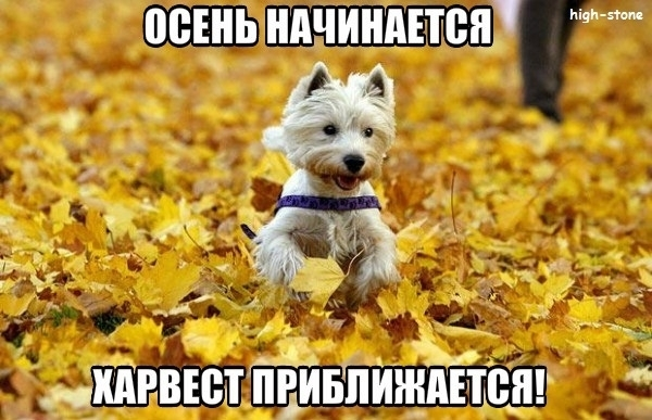 post-25888-0-50215700-1474878372_thumb.jpg