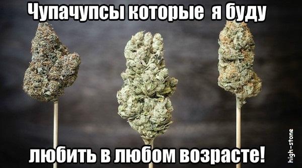 post-25888-0-90998300-1474973841_thumb.jpg