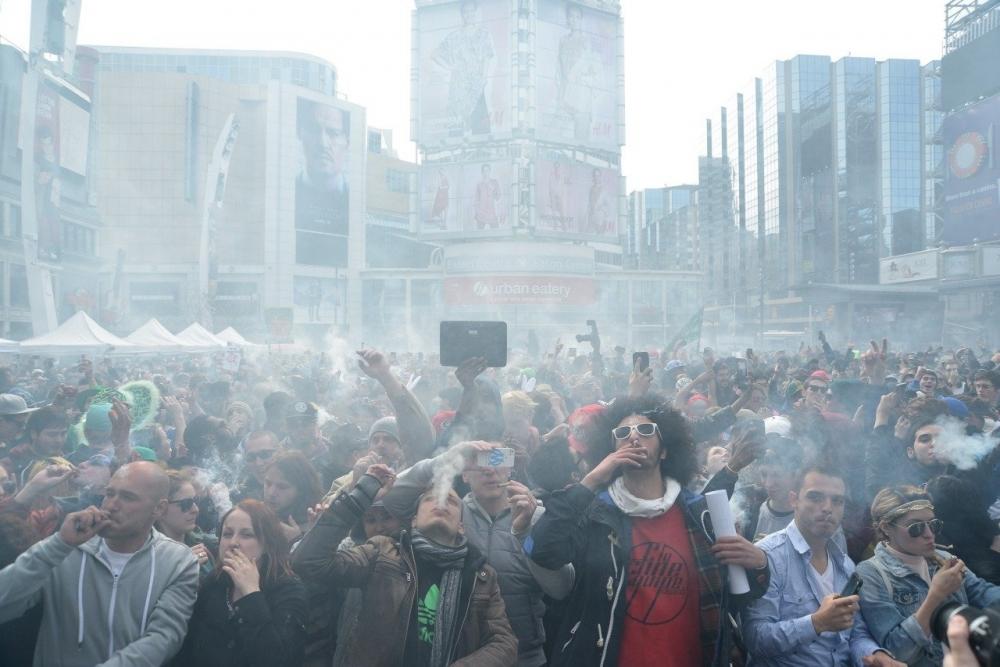 marijuana city.jpg