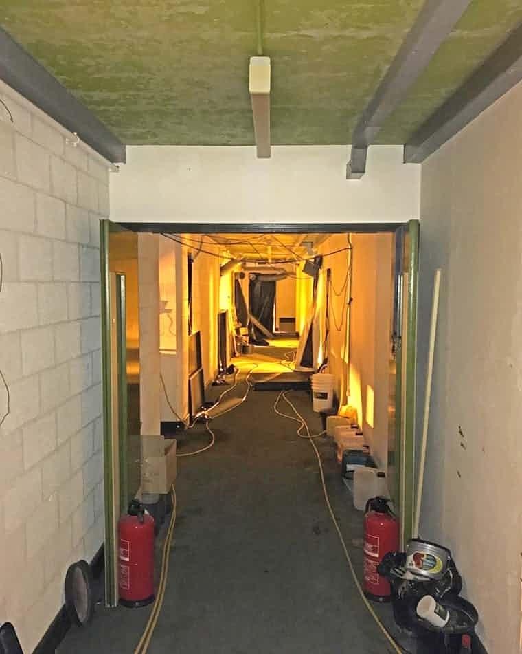 bunker cannabis 2.jpg