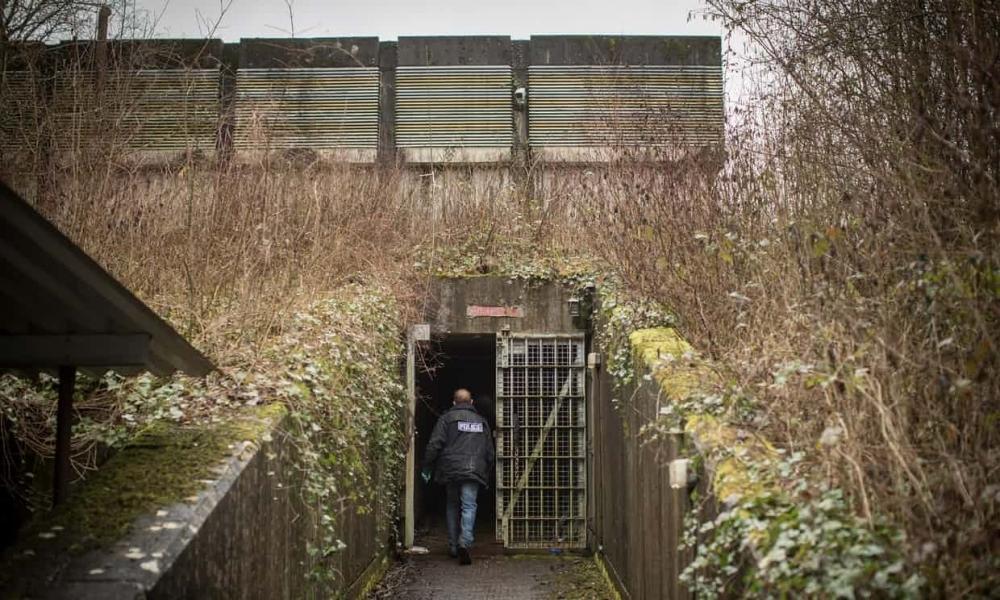 bunker cannabis 4.jpg