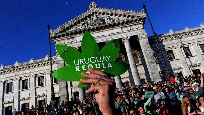 uruguay marijuana.jpg