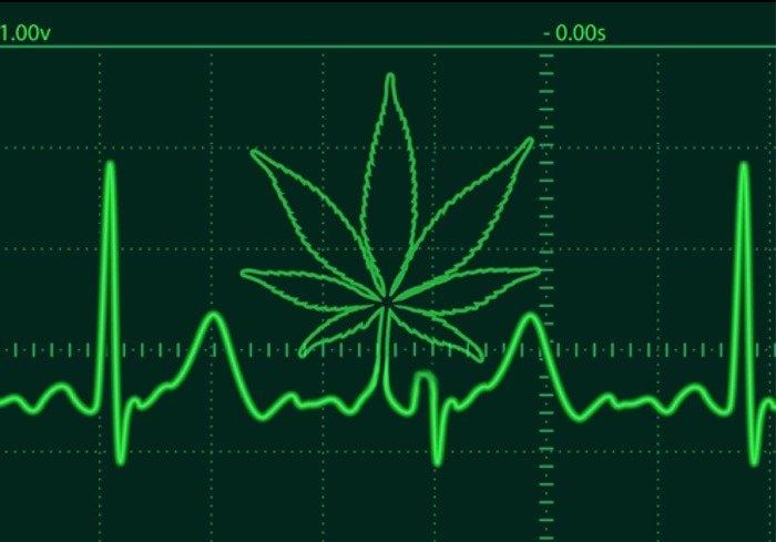 marijuana hypertony.jpg