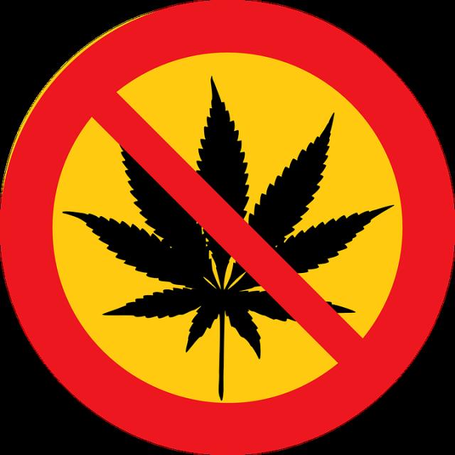 cannada vs cannabis.png