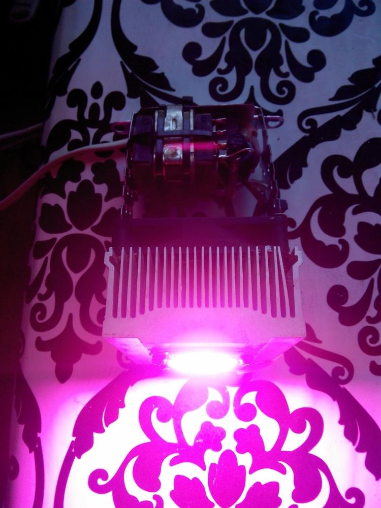 LAMP.thumb.jpg.c333cffeae78c3cc8545c9478e6e59a6.jpg