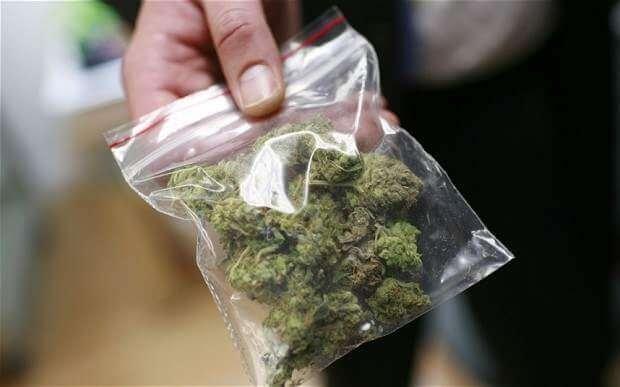 marijuana dealer.jpg