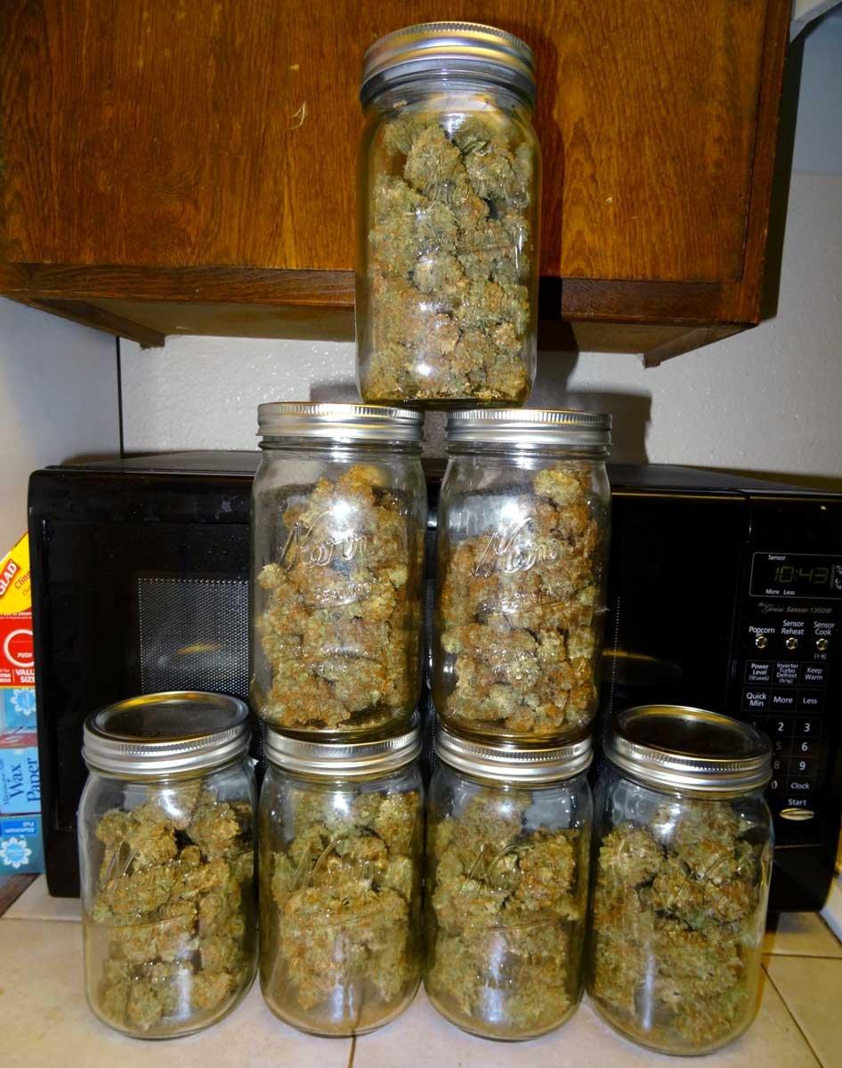 Как хранить марихуану марихуаны в моче