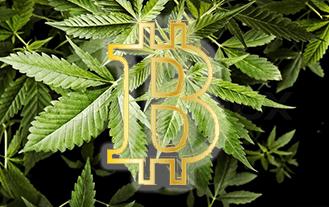 bitcoin marijuana.png