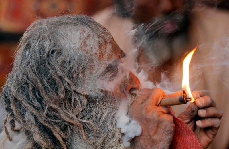 india marijuana.jpg