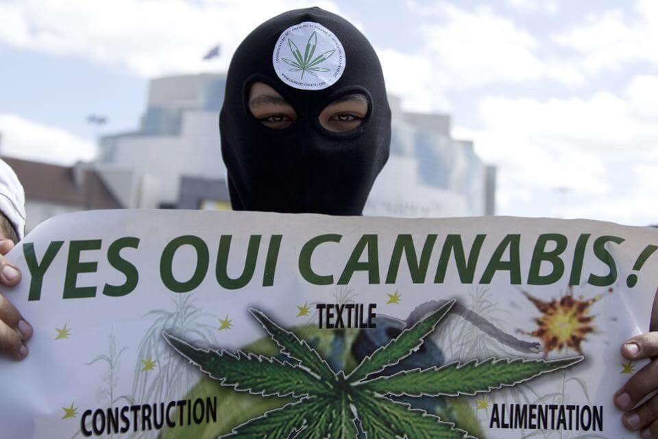marijuana france.jpg