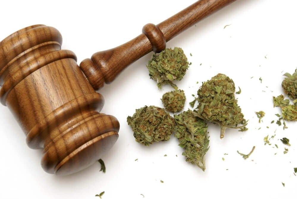 marijuana california (1).jpg