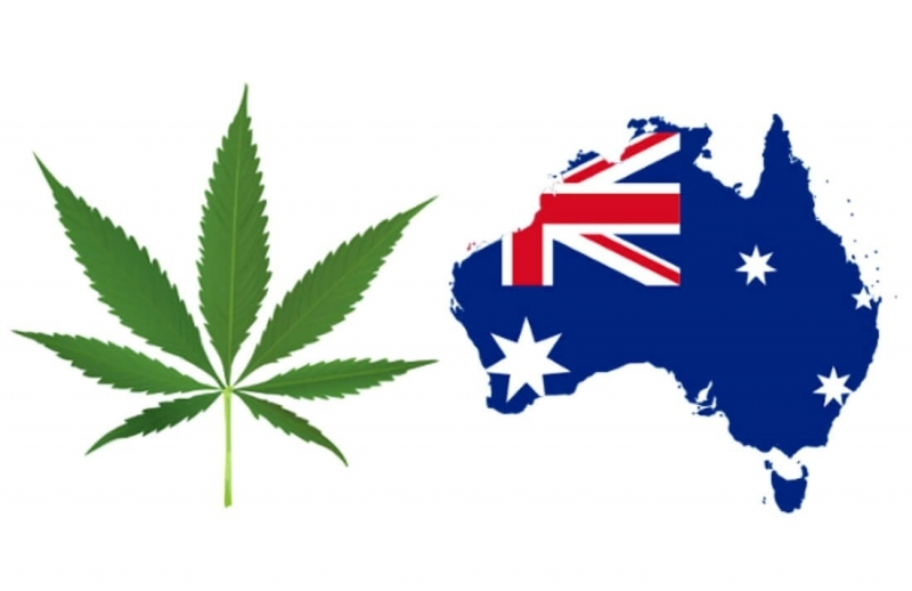 australia marijuana.jpg