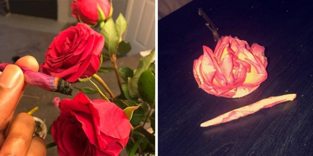 rose joint.jpg