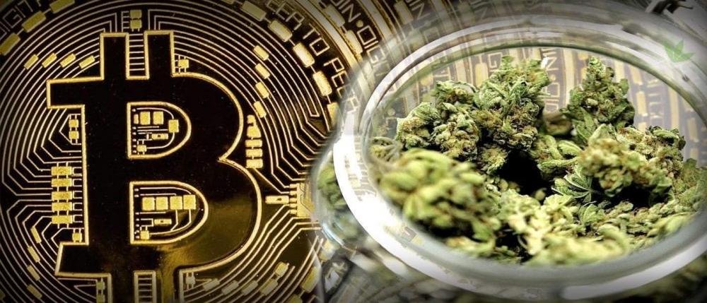 marijuana bitcoin (1).jpg
