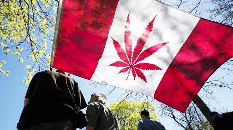 canada marijuana (1).jpg