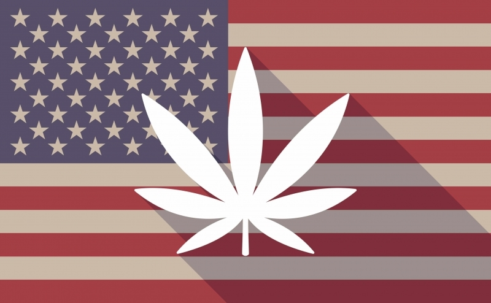 usa marijuana (1).jpg