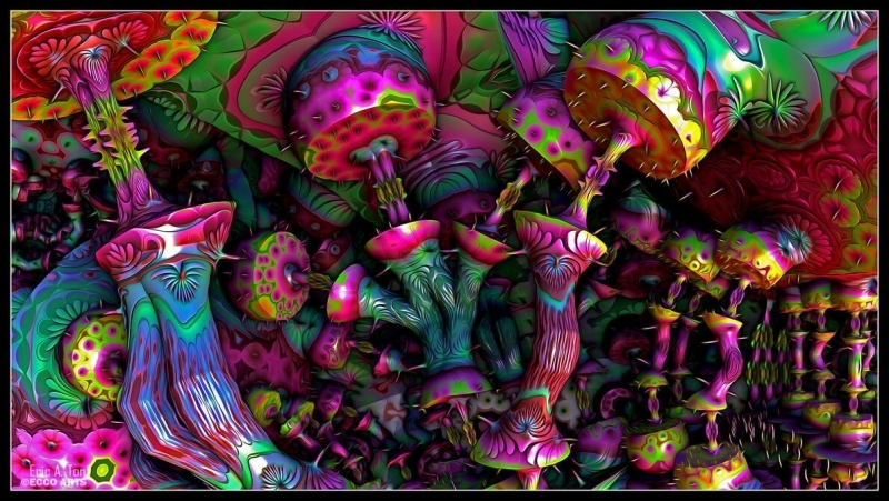 magic mushrooms (1).jpg