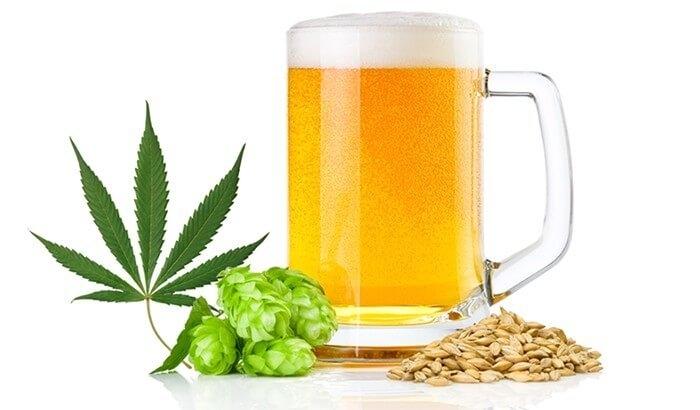 marijuana beer (2).jpg