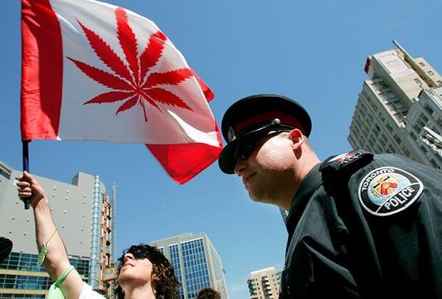 cannabis canada (1).jpg