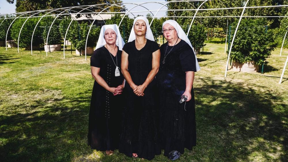 cannabis sisters (1).jpg