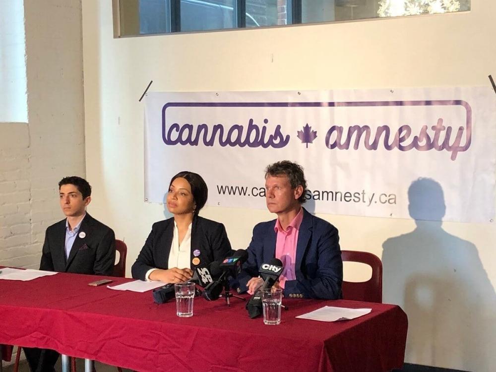 cannabis-amnesty.jpg