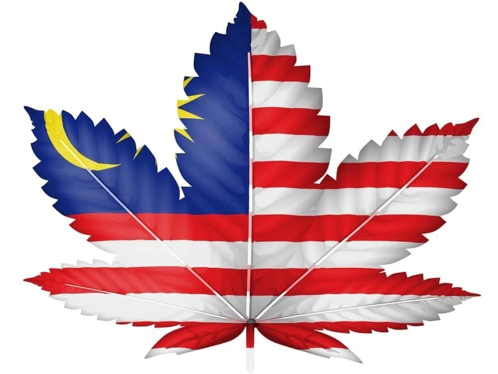 malaysia marijuana (1).jpg