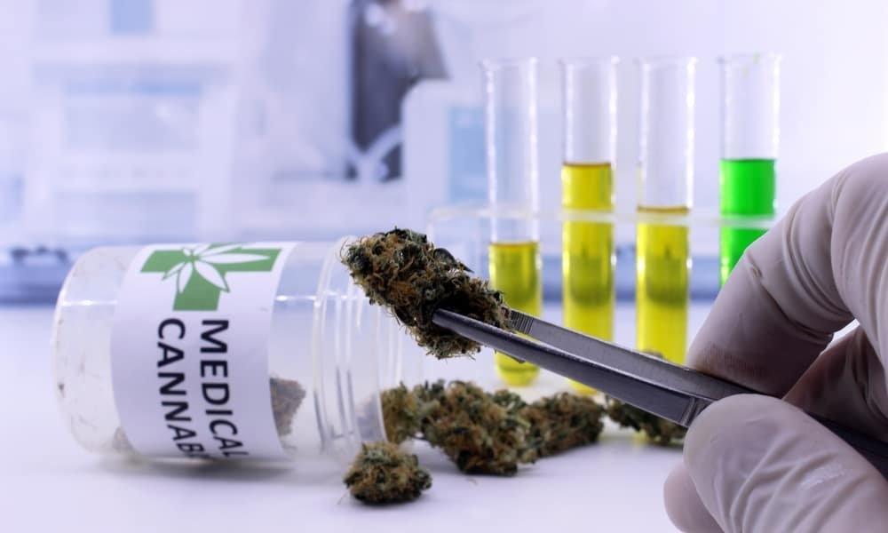 medical cannabis research.jpg