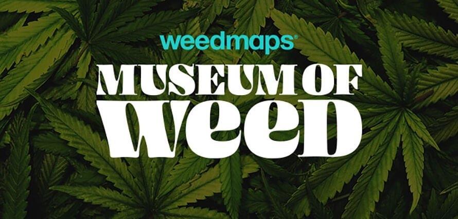 weedmaps cannabis museum (1).jpg