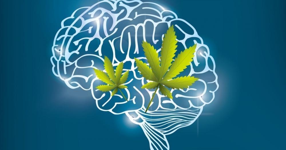 cannabis-mental-health.jpg