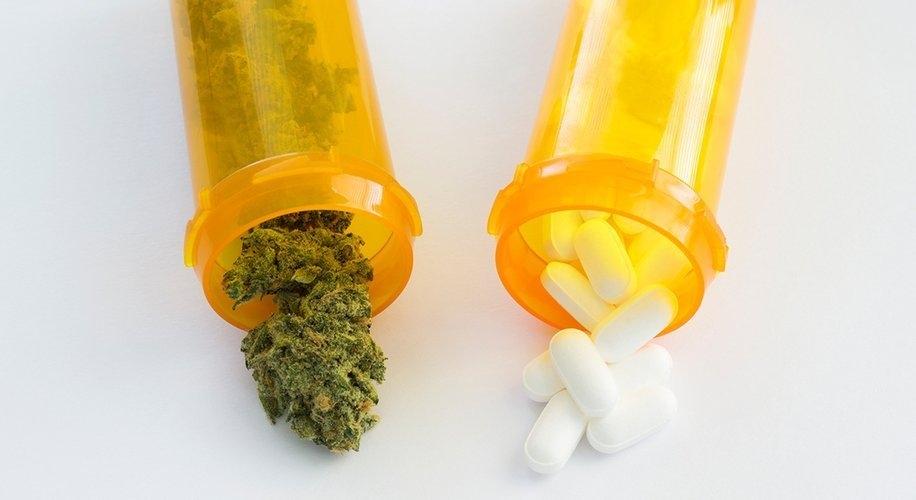 cannabis-opioid-crisis.jpg