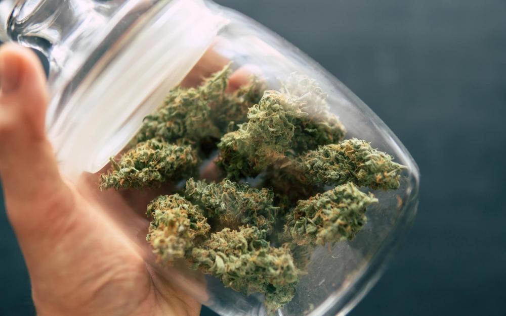 cannabis-tolerance-break (1).jpg