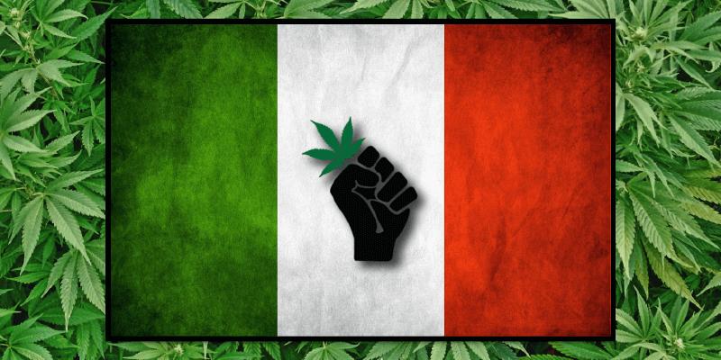 italy-bans-cannabis (1).png