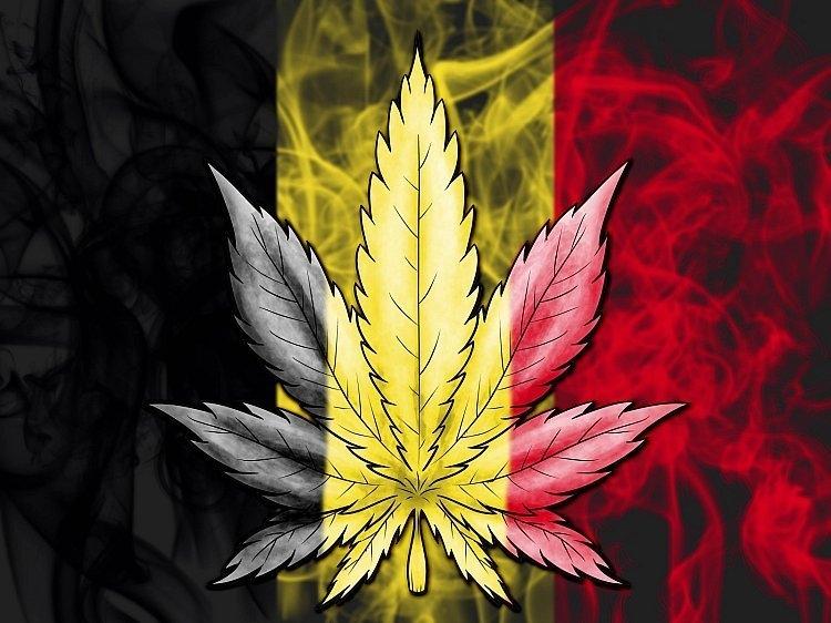 cannabis-belgium.jpg