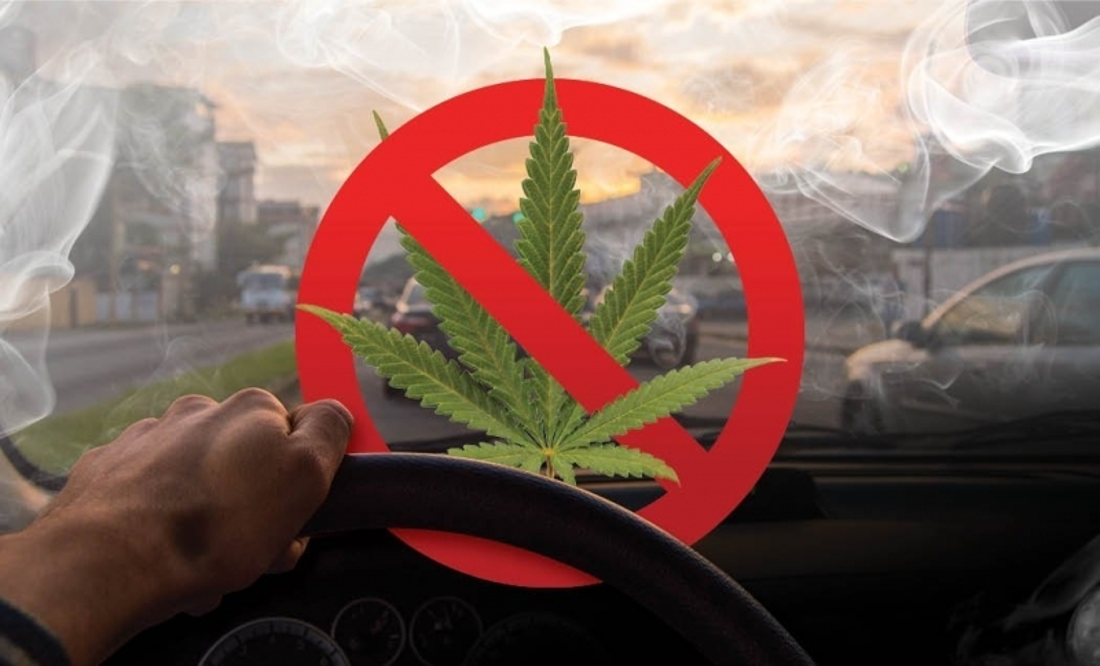 test-cannabis-driver.jpg