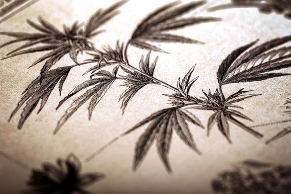 ancient-cannabis.jpg