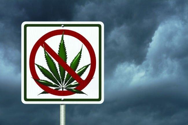 armenia-no-cannabis.jpg