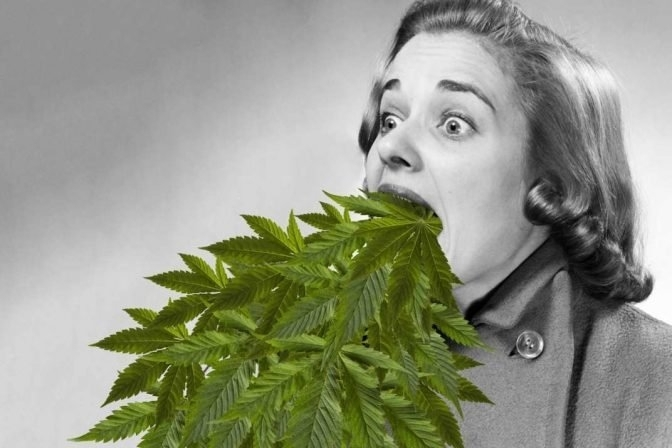 cannabis-vomiting-syndrome.jpg