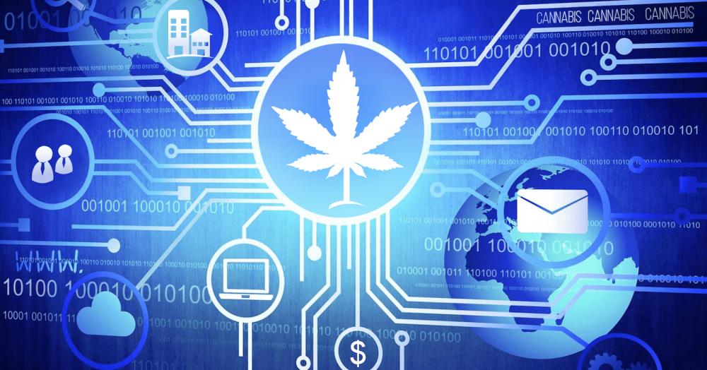 cannabis-blockchain (1).png