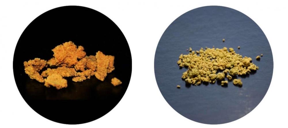 bioreactor-powder.jpg