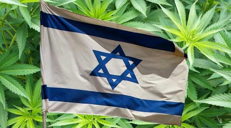 israel-cannabis-cafe.jpg