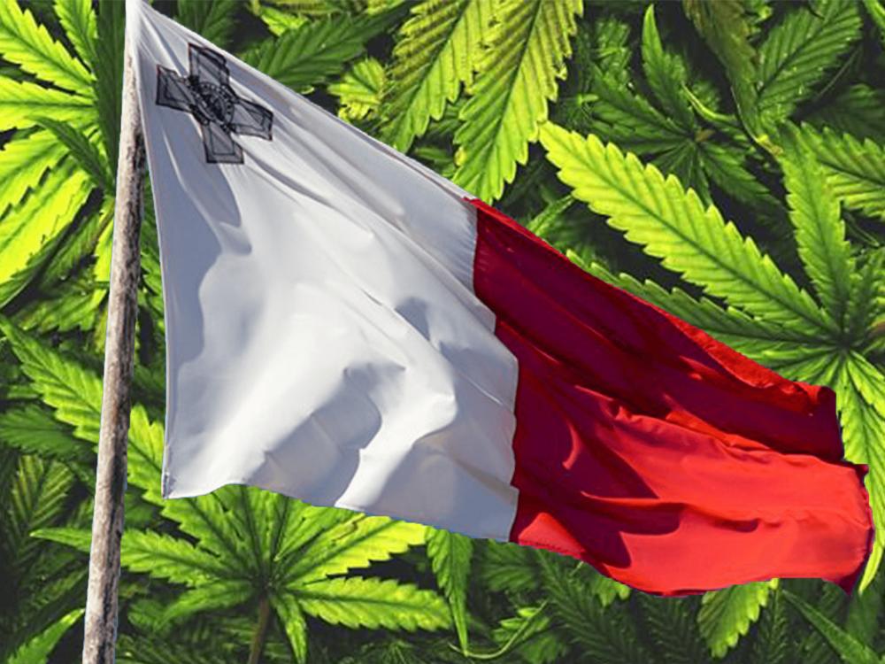 malta-export-cannabis.png