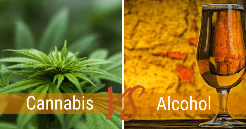 binge-drinking-falls-cannabis (1).png